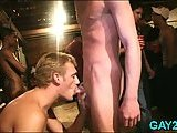 Gay cock sucking actions at party