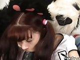 Teen Slides Her Pussy Down Pandas Big Dong