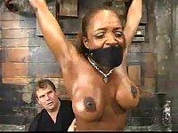Busty ebony toyed in bondage