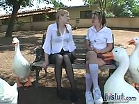 Madison Sins & Tabitha Blue get sex in a bus