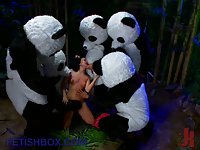 Pandas gangbang lullaby